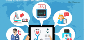 Data Systemization in Healthcare Facilitated by Healthureum