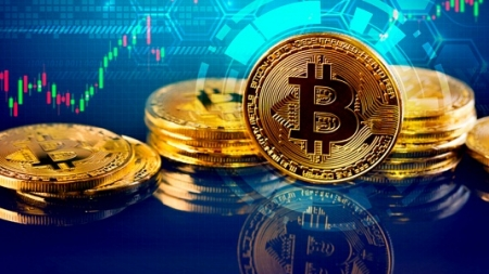 Crypto Market Recovers, Bitcoin Experiences Biggest Gain