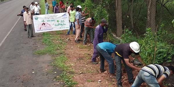 """Gangavaram Port plants 2500 saplings under """"Vanam-Manam"""" program"""