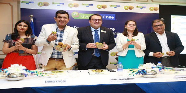 Kiwifruit from Chile to be Exported to the Indian Market