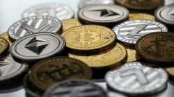 Bitcoin Leads the Growth Trajectory of All Top Cryptocurrencies