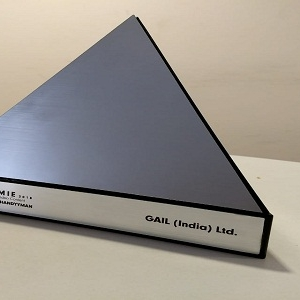 GAIL Wins 'Silver Award' at SAMMIE Award 2018
