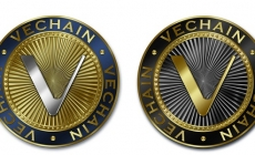 Overnight Upsurge in the Prices of China-based VeChain