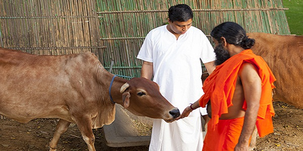 Competition in Dairy Sector to Intense as Patanjali all Set to Foray into it